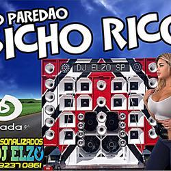 CD PAREDAO BICHO RICO 2019