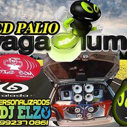 CD PALIO VAGALUME AS TOP 2021 BY DJ ELZO