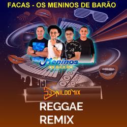 OS MENINOS DO BARÃO DJ NILDO MIX REGGAE REMIX FACAS 202