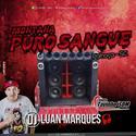 Montana Puro Sangue - DJ Luan Marques - 01
