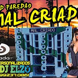 CD PAREDAO MAL CRIADO BY DJ ELZO