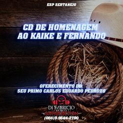 CD PARA KAIQUE E FERNANDO SERTANEJO TOP