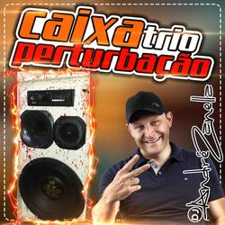 CD CAIXA TRIO PERTURBACAO 2020