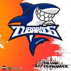 Os Tubaroes - DJ Gilvan Fernandes