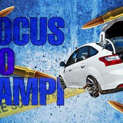 Focus Do Zampi