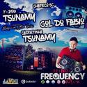 CD F250 Tsunamy e Amigos - DJ Frequency Mix - 00
