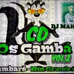 Os Gamba Arambare RS 2K20 Dj Marlon