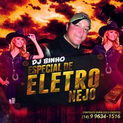 Cd Dj Binho Especial EletroNejo