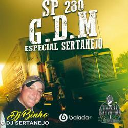 Cd G.D.M Sp 280 Especial Sertanejo