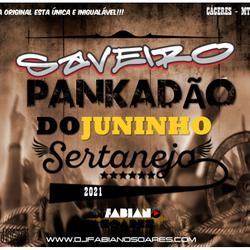 CD - SAVEIRO PANKADÃO DO JUNINHO SERTANEJO 2021