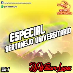CD ESPECIAL DE SERTANEJO 2019