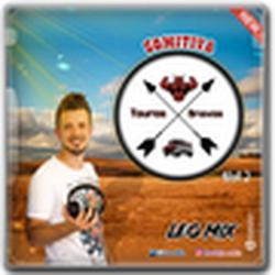 CD COMITIVA TOUROS BRAVOS VOLUME 2