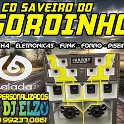 CD SAVEIRO DO GORDINHO 2021 BY DJ ELZO
