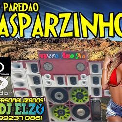 CD PAREDAO GASPARZINHO 2020 BY DJ ELZO