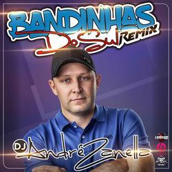CD BANDINHAS DO SUL REMIX TUM DUM VOL 1