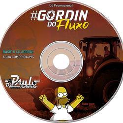 Cd Gordin do Fluxo Dj PauloRoberto
