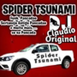 SPIDERTSUNAMI PANACADAO