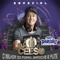 01 Paredao Paraiso DJ Celso 48 99178 6769