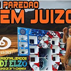 CD PAREDAO SEM JUIZO BY DJ ELZO