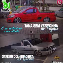 CD TANA SEM VERGONHA DO PIGATO E SAVEIRO