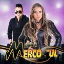 Mercosul - Pra que Brigar 2019 TumDum DJ Kinho Mix