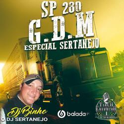 Cd G.D.M Sp 280 Esp Sertanejo
