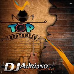 CD TOP SERTANEJO 2021