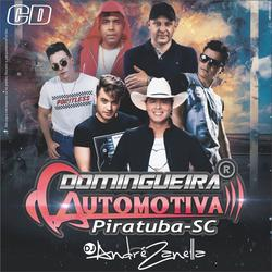 CD DOMINGUEIRA AUTOMOTIVA PIRATUBA 2019