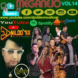 MEGANEJO 2020 DJNILDOMIX VOL 14