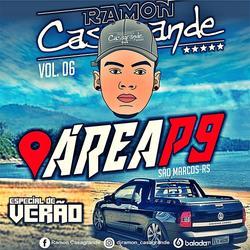 CD AREA P9 VOL 6 ESPECIAL DE VERAO