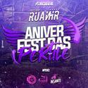 00 - CD AniverFest Das Pertile - DJ RuanHR