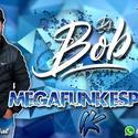 MEGAFUNK ESPECIAL 1K - DJ BOB