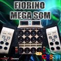 Fiorino Mega Som00
