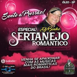 Cd Dj Binho Especial Sertanejo Romântico
