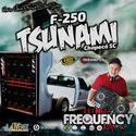 CD F250 Tsunamy - DJ Frequency Mix - 00