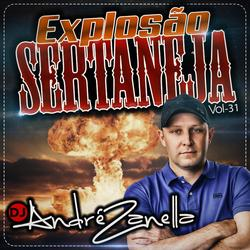CD EXPLOSAO SERTANEJA VOLUME 31