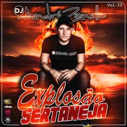 CD EXPLOSAO SERTANEJA VOLUME 33
