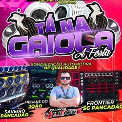 TA NA GAIOLA A FESTA  DJ CLEITON MIX