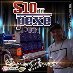 CD S10 DO PEXE DJ ANDRE ZANELLA