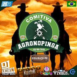 CD COMITIVA AGRONOPINGA