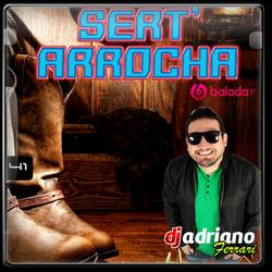 CD SERTANEJOI ARROCHA VOL 41
