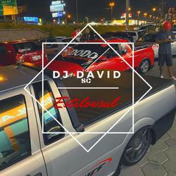CD - Equipe EstiLowSul Vol 01 - DJ David SC
