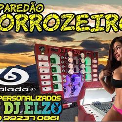 CD PAREDAO FORROZEIRO 2020 BY DJ ELZO