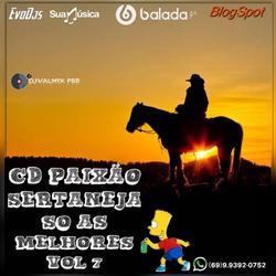 CD PAIXAO SERTANEJA SO AS MELHORES VOL 7