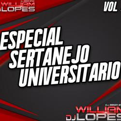 CD ESPECIAL DE SERTANEJO 2019 VOL 2